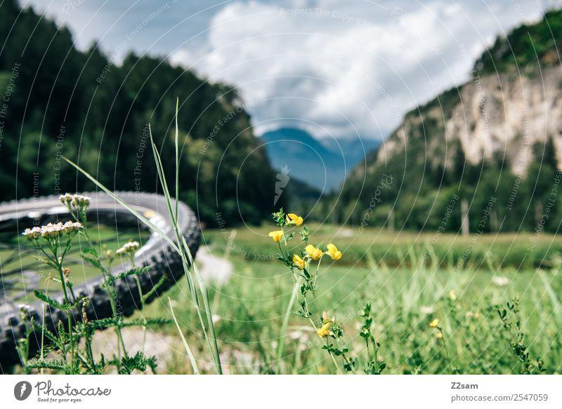 Transalp, Inntal Freizeit & Hobby Ferien & Urlaub & Reisen Fahrradtour Sommerurlaub Berge u. Gebirge Sport Fahrradfahren Natur Landschaft Schönes Wetter Gras