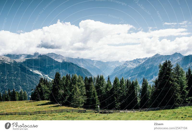 Richtung Pitztal Ferien & Urlaub & Reisen Berge u. Gebirge Natur Landschaft Himmel Sommer Schönes Wetter Wiese Wald Alpen ästhetisch nachhaltig natürlich blau