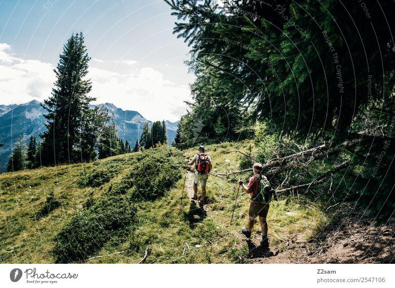 Wanderer | Pitztaler Alpen | Österreich Mensch Natur Ferien & Urlaub & Reisen Sommer Landschaft Wald Berge u. Gebirge Lifestyle Erwachsene natürlich Sport Paar