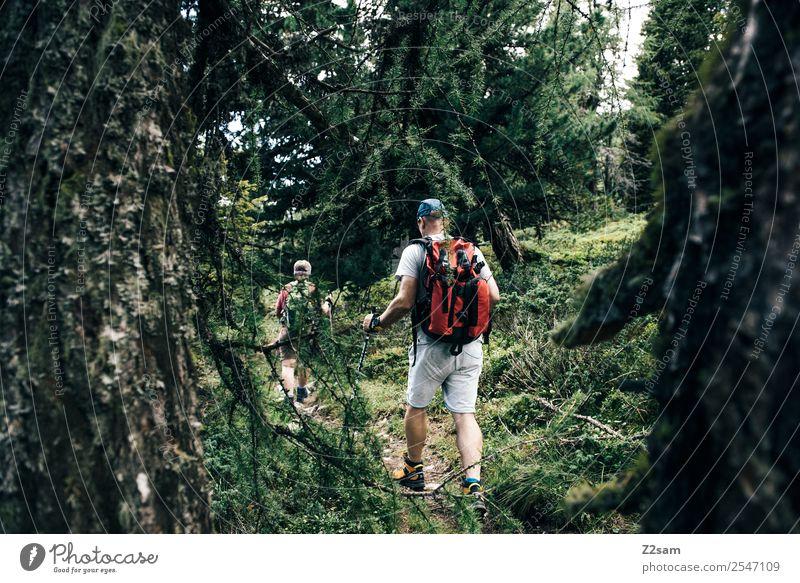 E5 Frau Mensch Natur Ferien & Urlaub & Reisen alt grün Landschaft Baum Erholung ruhig Wald Berge u. Gebirge Senior natürlich feminin Sport