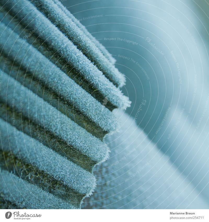 Frostkleidung Natur weiß Winter kalt Umwelt grau Eis Dach Jahreszeiten Moos Oberfläche Furche fein Eiskristall bedeckt