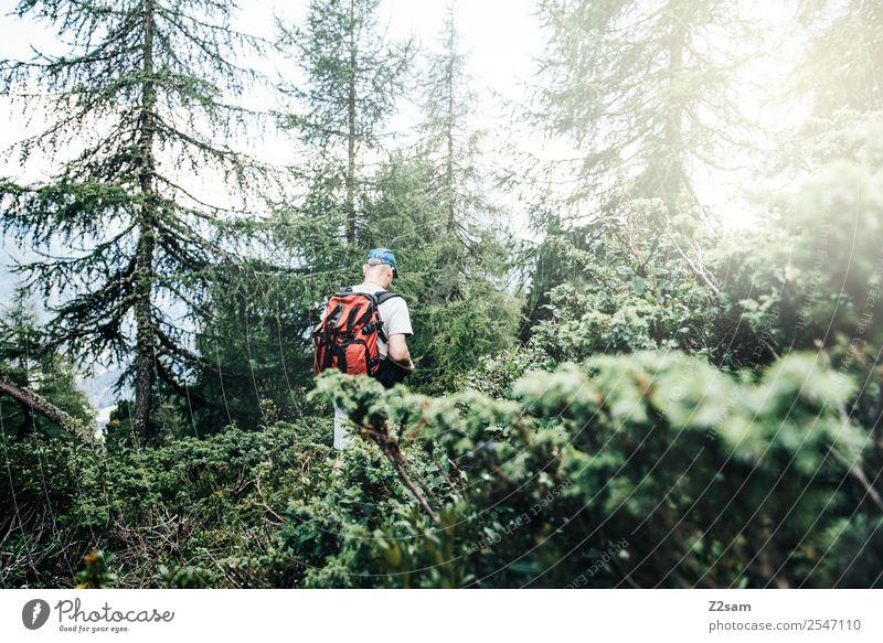 Wandern im Pitztal Natur Mann Sommer Landschaft Sonne Erholung Wald Berge u. Gebirge Gesundheit Erwachsene Umwelt natürlich Sport Tourismus gehen wandern