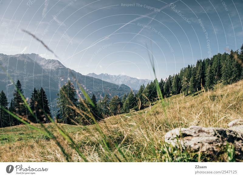 Bergpanorama im Pitztal Ferien & Urlaub & Reisen Berge u. Gebirge wandern Umwelt Natur Landschaft Sommer Schönes Wetter Feld Alpen nachhaltig natürlich blau