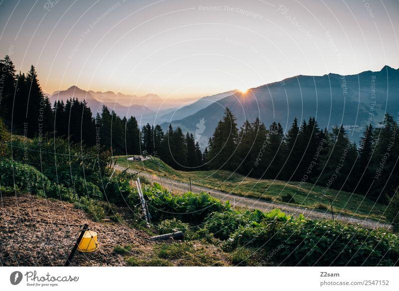 Sonnenaufgang im Pitztal Natur Ferien & Urlaub & Reisen Sommer Farbe Landschaft Berge u. Gebirge natürlich Stimmung Ausflug wandern Idylle Abenteuer