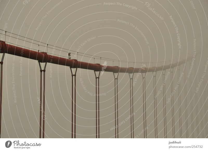 Golden Gate Bridge II rot Ferien & Urlaub & Reisen Architektur grau Nebel Seil Brücke Stahl Rost Wahrzeichen Sightseeing Sehenswürdigkeit Kalifornien Städtereise Nordamerika