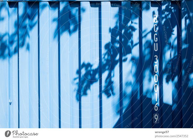 Laubcontainer Container Baum Stahl Schriftzeichen Ziffern & Zahlen blau Schatten Schattenspiel Ast Blatt Blätterdach Lichtspiel Buchstaben Farbfoto
