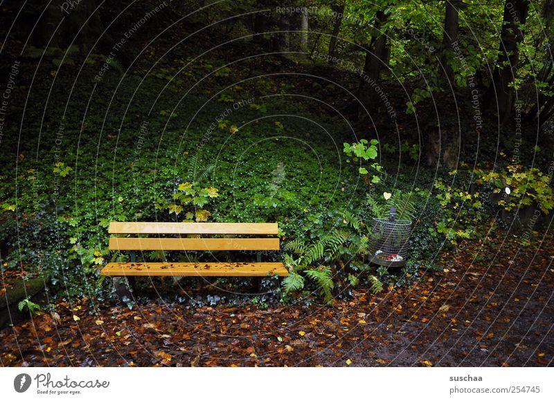 kurze pause .. Erholung ruhig Kur Umwelt Natur Herbst Park dunkel grün Einsamkeit Parkbank ausruhen Abfalleimer Bäume Wald Blatt Farbfoto Außenaufnahme