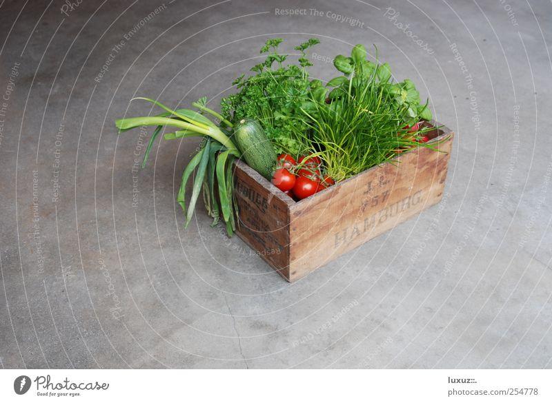 frisch Gesundheit Lebensmittel Ernährung Gemüse Kräuter & Gewürze Dienstleistungsgewerbe Landwirt Bioprodukte ökologisch Kiste Tomate nachhaltig innovativ
