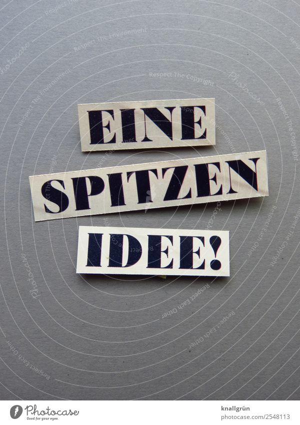 EINE SPITZEN IDEE! Schriftzeichen Schilder & Markierungen Kommunizieren außergewöhnlich Erfolg grau schwarz weiß Gefühle Stimmung Glück Zufriedenheit Vorfreude