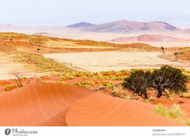 Welcome to Namibia Himmel Natur Ferien & Urlaub & Reisen Sommer Pflanze Landschaft Baum Ferne Wärme Umwelt Gras Tourismus Freiheit Sand Ausflug Erde