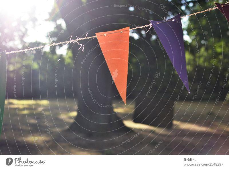 Sommerstimmung Lifestyle Freizeit & Hobby Sonne Party Landschaft Sonnenlicht Park Wiese Fahne hängen leuchten Fröhlichkeit Kitsch braun grün violett orange