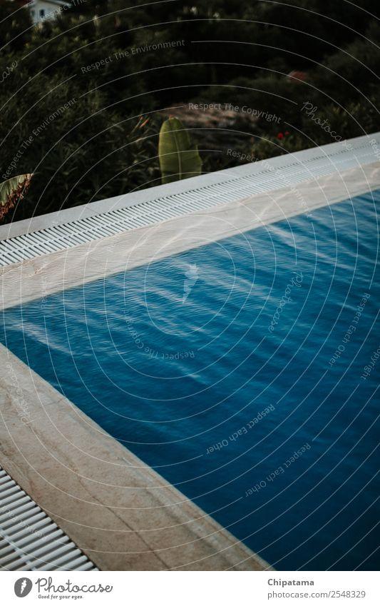 Ferien & Urlaub & Reisen Sommer blau schön Wasser Freude Strand Stil Kunst Freiheit Schwimmen & Baden ästhetisch Fröhlichkeit Erfolg genießen Geborgenheit