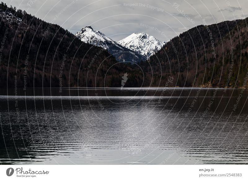 900   Einschnitt Ferien & Urlaub & Reisen Ausflug Ferne Berge u. Gebirge Natur Landschaft Himmel Winter Alpen Gipfel Schneebedeckte Gipfel See dunkel schwarz