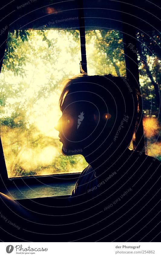 Looking into the unconquered country, we call the future. Mensch Jugendliche Baum Einsamkeit Fenster Gefühle Erwachsene Kopf Haare & Frisuren Traurigkeit sitzen maskulin beobachten nachdenklich Sehnsucht 18-30 Jahre
