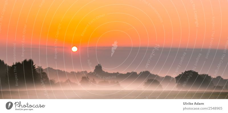 Mystischer Sonnenaufgang im Teufelsmoor Natur Landschaft Himmel Herbst Schönes Wetter Nebel Feld Moor Worpswede Deutschland positiv orange Romantik ruhig
