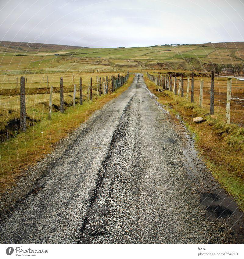 Leave in Silence Ausflug Ferne Natur Landschaft Erde Himmel Wolken Pflanze Gras Wiese Feld Hügel Republik Irland Straße grau grün gerade geradeaus Zaun