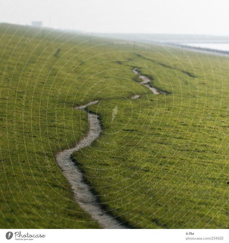 Umwege grün ruhig Herbst Umwelt Gras Küste wandern Nordsee schlechtes Wetter Deich Wattenmeer Schleswig-Holstein Dithmarschen