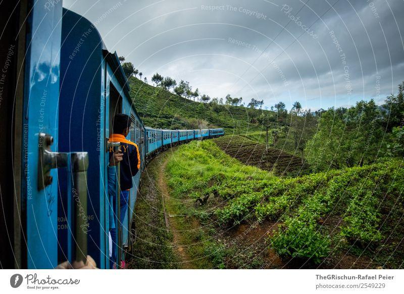 Zugfahrt Natur Landschaft blau grün orange Sri Lanka Tee Plantage Feld Aussicht Baum Idylle Eisenbahn Güterverkehr & Logistik Bahnfahren Farbfoto Außenaufnahme