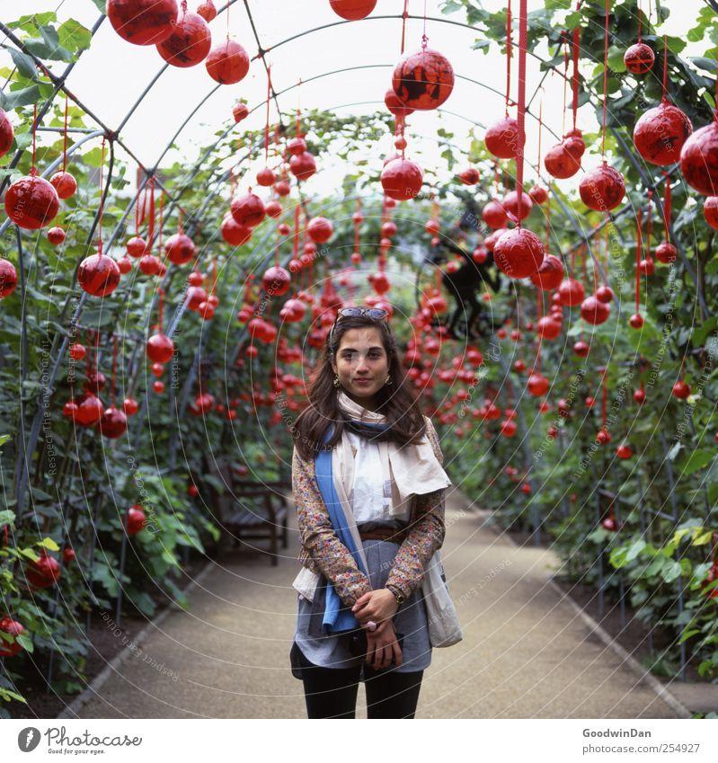 Kensington Gardens. Frau Mensch Natur Jugendliche schön Pflanze Freude feminin Umwelt Erwachsene träumen Stimmung Park hell Zufriedenheit warten