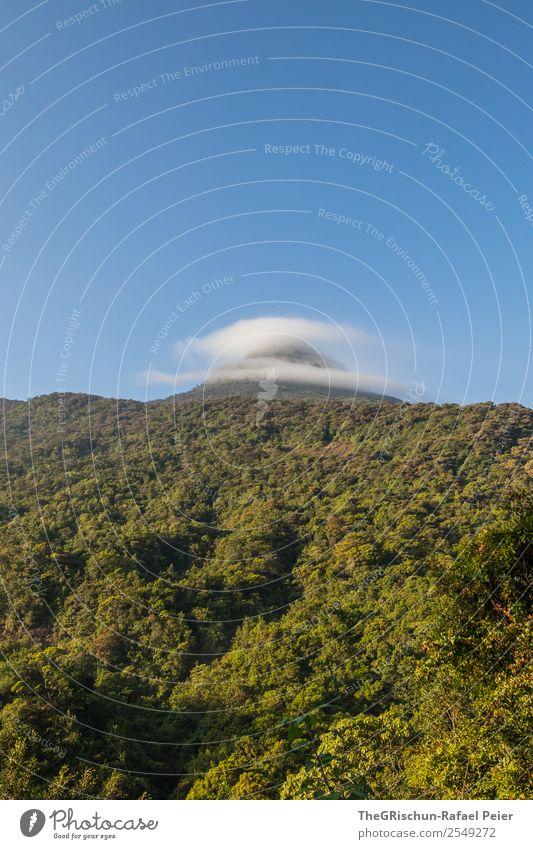 Adam's Peak - Sri Lanka Natur blau grün Berge u. Gebirge Wolken adam's Peak pilgerort Religion & Glaube Wald Himmel Baum wandern Farbfoto Außenaufnahme