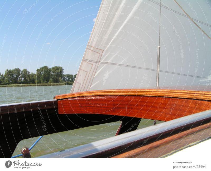 Segeln Wasser Sonne Sommer Wasserfahrzeug Europa Segelboot