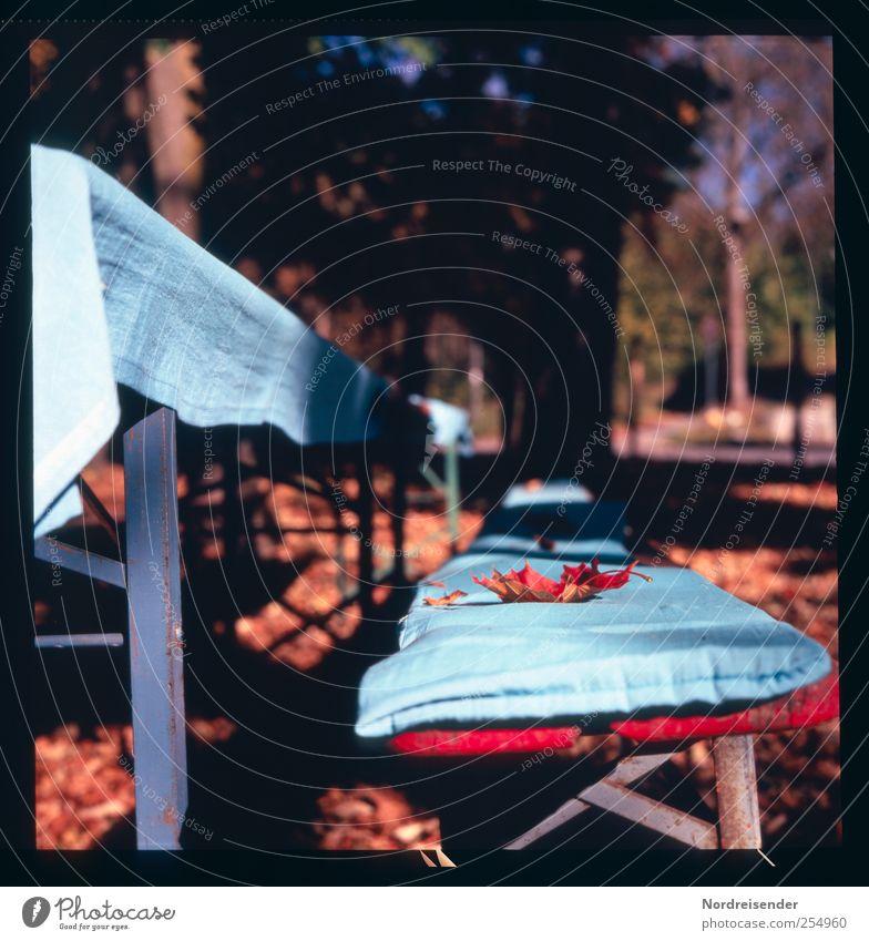 Chamansülz | Herbstdekoration Natur blau ruhig Farbe Erholung Garten Stil Wärme Park Feste & Feiern Lifestyle Dekoration & Verzierung Bank Freundlichkeit Möbel