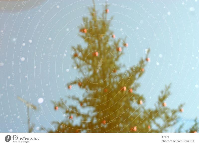 schräge Weihnachten Dekoration & Verzierung Feste & Feiern Weihnachten & Advent Umwelt Himmel Klima Eis Frost Schnee Schneefall glänzend hängen trashig blau rot
