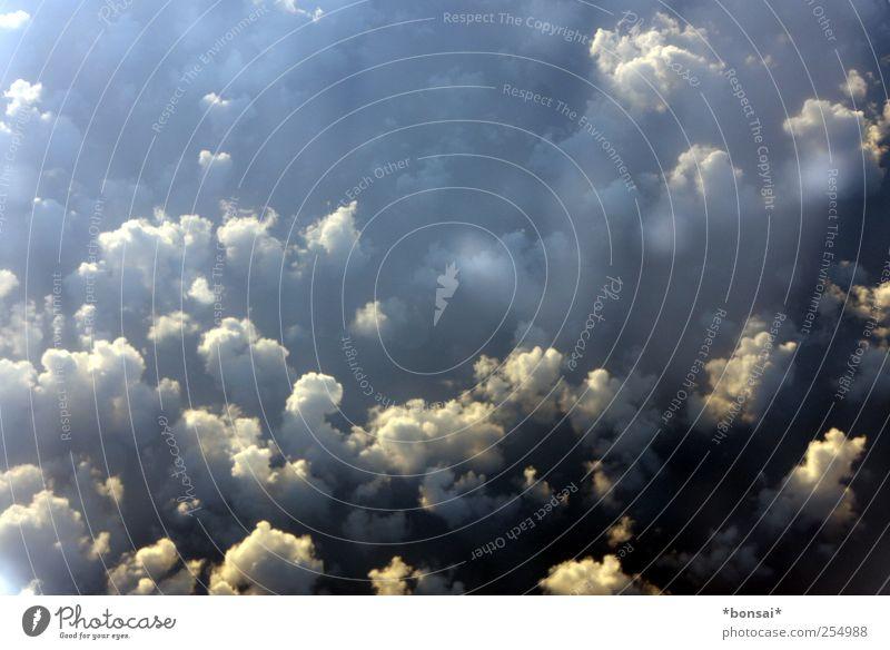 zuckerwatte-lager Luft Himmel Wolken Sonnenlicht Schönes Wetter Luftverkehr Passagierflugzeug fliegen leuchten Ferne frei gigantisch Unendlichkeit hoch