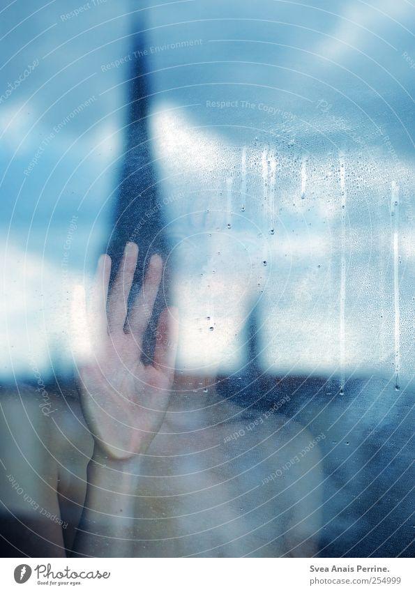 durchblickend. feminin Junge Frau Jugendliche Haut Hand 1 Mensch 18-30 Jahre Erwachsene Fensterscheibe stehen dünn blau Traurigkeit Farbfoto Gedeckte Farben