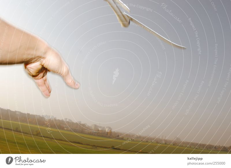 flugbegleiter Lifestyle Freizeit & Hobby Spielen Arme Hand Finger Umwelt Natur Landschaft Pflanze Tier Wolkenloser Himmel Horizont Wetter Schönes Wetter Wiese