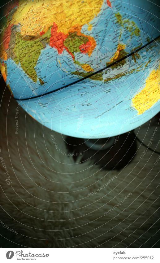 Globalisierung Umwelt Erde Kunststoff Zeichen Schriftzeichen Ziffern & Zahlen dreckig groß rund mehrfarbig Wissen Globus Landkarte Lampe Geografie Meer