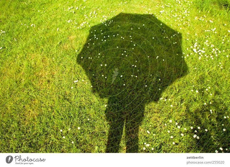 Schirm Wellness Leben harmonisch Zufriedenheit Sinnesorgane Erholung ruhig Meditation Sommer Sommerurlaub Garten Mensch 1 Natur Wolken Klima Klimawandel Wetter