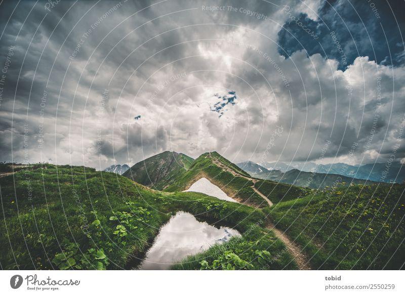 Berggipfel Natur Landschaft Pflanze Himmel Wolken Horizont Wetter Schnee Gras Sträucher Moos Wiese Felsen Alpen Berge u. Gebirge Gipfel Wege & Pfade