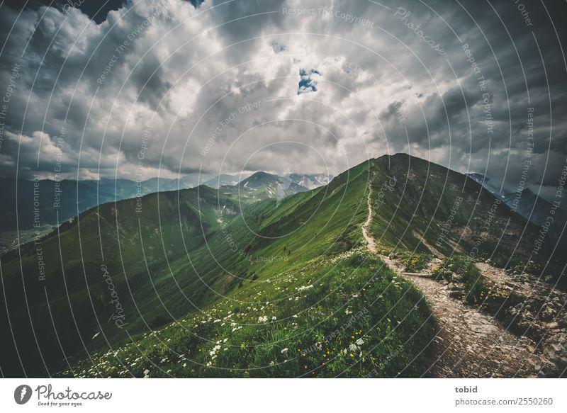 Alpengipfel mit Wolken Himmel Natur Pflanze Landschaft Ferne Berge u. Gebirge dunkel Wege & Pfade Wiese Gras außergewöhnlich Felsen Horizont Wetter Sträucher