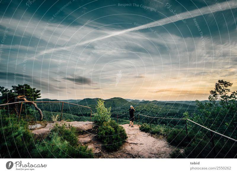 Panoramablick Pt2 Ferne Freiheit Sommer Natur Landschaft Pflanze Himmel Wolken Horizont Schönes Wetter Baum Gras Sträucher Wald Hügel Felsen Wege & Pfade