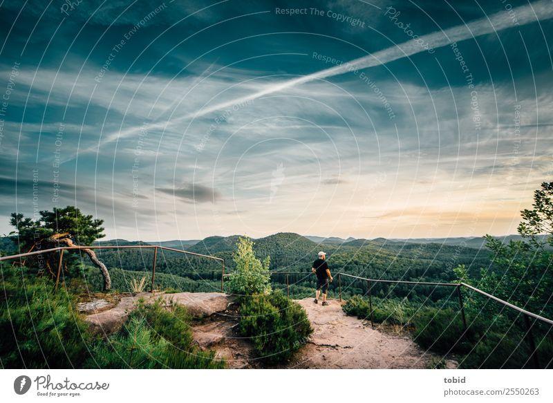 Panoramablick Natur Landschaft Pflanze Himmel Wolken Horizont Sommer Schönes Wetter Baum Gras Sträucher Wald Hügel Felsen beobachten stehen Ferne Unendlichkeit