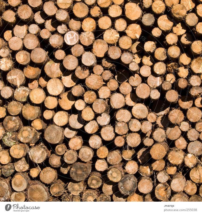 Holz Holzfäller Waldarbeiter Umwelt Klimawandel viele Abholzung Stapel Baumstamm Waldsterben Vorrat Brennholz Ordnung Forstwirtschaft Holzhacken anzünden