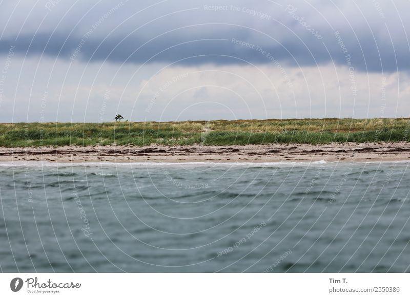 Hiddensee Segeln Umwelt Natur Landschaft Pflanze Urelemente Wasser Himmel Gewitterwolken Sommer Wellen Küste Ostsee Meer Insel Ferien & Urlaub & Reisen Horizont