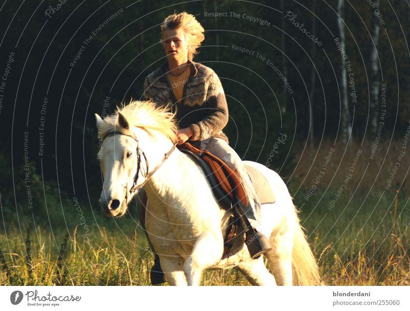 """""""es schlug mein herz geschwind zu pferde..."""" Mensch Natur Jugendliche Sommer Baum Tier Einsamkeit Erwachsene Leben Sport Haare & Frisuren Glück Kopf 18-30 Jahre blond maskulin"""
