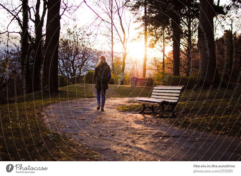 zeit für mich. harmonisch Wohlgefühl Zufriedenheit Sinnesorgane Erholung ruhig Frau Erwachsene 1 Mensch Natur Herbst Baum Gras Blatt gehen Vorsicht Gelassenheit