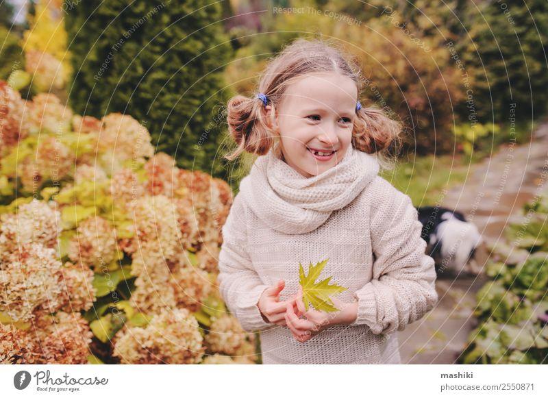 Kind Mädchen, das Ende Oktober oder November im Garten spazieren geht. Lifestyle Freude Ferien & Urlaub & Reisen Natur Herbst Blume Blatt Lächeln lustig