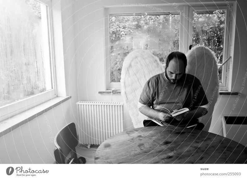 Engel Mensch Mann Einsamkeit Erwachsene Fenster Traurigkeit Religion & Glaube außergewöhnlich Raum maskulin sitzen Glas Buch Tisch Flügel lesen