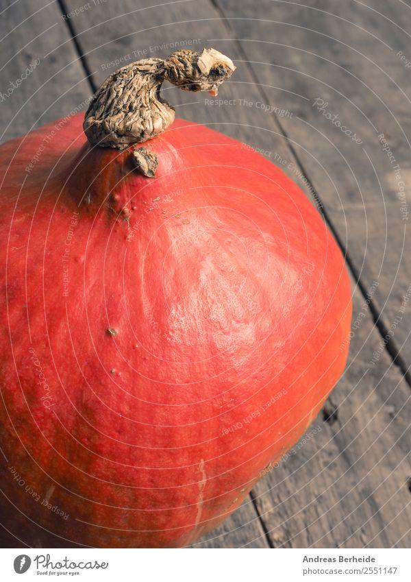Bio Hokkaido Kürbis Gemüse Bioprodukte Vegetarische Ernährung Diät Gesunde Ernährung Sommer Halloween Natur frisch Gesundheit lecker orange red Hintergrundbild