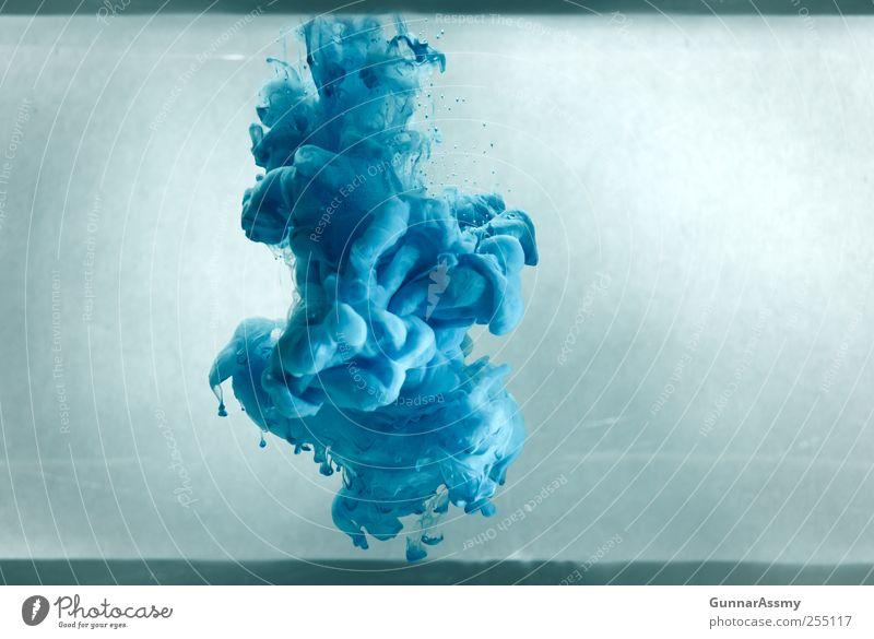 curve against corner blau grün natürlich grau ästhetisch retro einzigartig Kunst chaotisch exotisch Unterwasseraufnahme bizarr Kunstwerk innovativ gigantisch Experiment