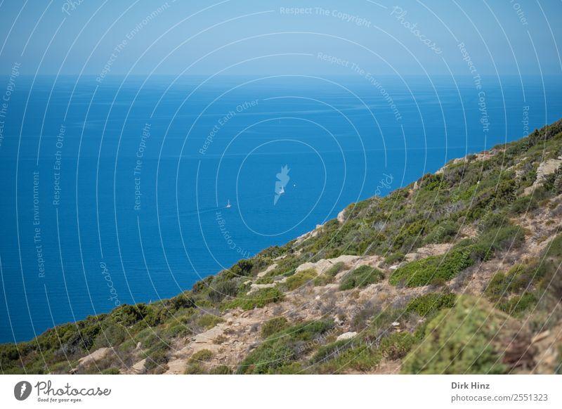 Segler im Mittelmeer an der Küste Korsikas Ferien & Urlaub & Reisen Tourismus Ausflug Ferne Freiheit Sommerurlaub Meer Insel Umwelt Natur Landschaft Wasser