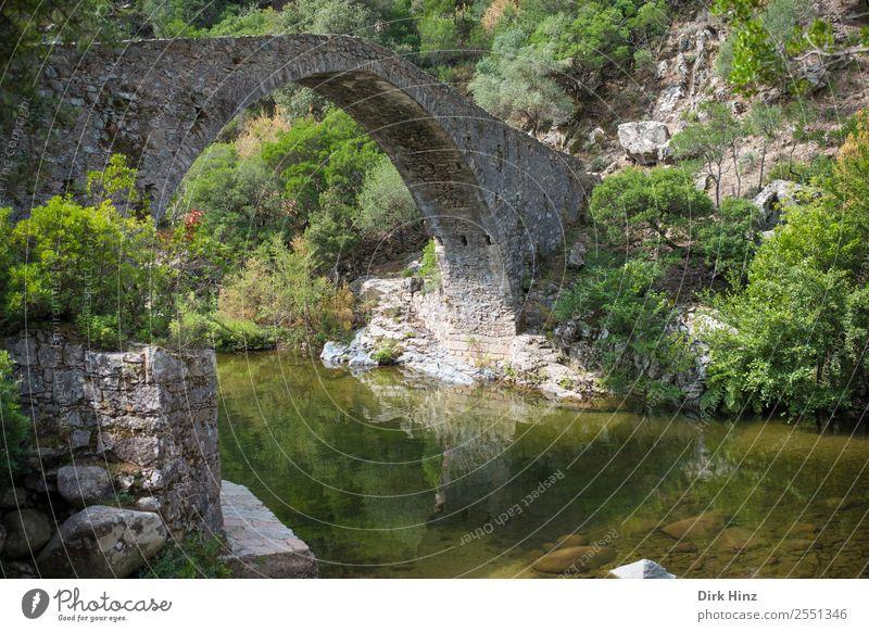 Alte Brücke über korsischem Fluss Lonca Natur Ferien & Urlaub & Reisen alt Pflanze grün Wasser Landschaft Ferne Berge u. Gebirge Architektur Wand Umwelt