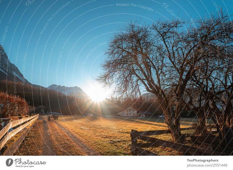 Natur Ferien & Urlaub & Reisen Landschaft Berge u. Gebirge gold Europa Sehenswürdigkeit Alpen Jahreszeiten Dorf Örtlichkeit Europäer Blauer Himmel Österreich