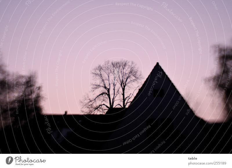 Silhouette Himmel blau Baum rot Winter schwarz Haus Herbst dunkel Gefühle Holz Architektur Stein Gebäude rosa leuchten