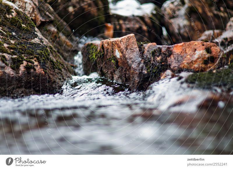 Bergbach Felsen Geröll Stein Landschaft Natur Norwegen Ferien & Urlaub & Reisen Reisefotografie Skandinavien Strömung Textfreiraum wandern Wasser Wasserfall