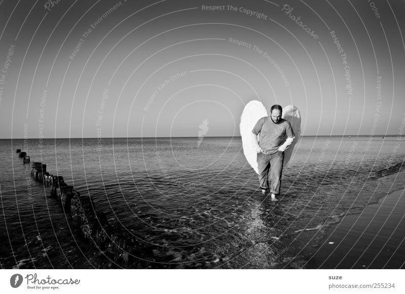 Engel Freiheit Strand Meer Mensch maskulin Mann Erwachsene 1 30-45 Jahre Umwelt Natur Urelemente Wasser Horizont Küste Ostsee Flügel außergewöhnlich Hoffnung